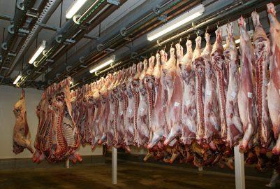 Surconsommation de viande : l'appel au changement de Terra Nova