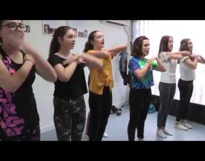 L'École de Comédie Musicale de Toulouse propose son premier spectacle.