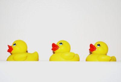 La DuckRace à Toulouse, une polémique plastique ?