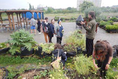 Ferme urbaine aux Pradettes : c'est tout un quartier qui soutient le projet