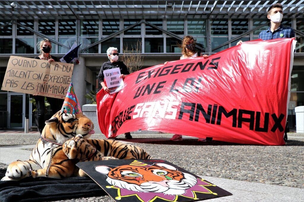 Rassemblement pour des cirques sans animaux